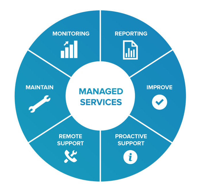 COSTANSIN Managed Services Model